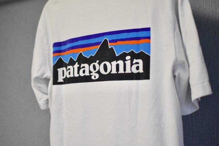 パタゴニアのロゴTのバック部分